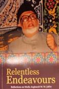 Relentless Endeavors